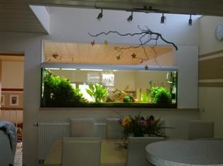 galerie aquarienkontorde by christian tyburski