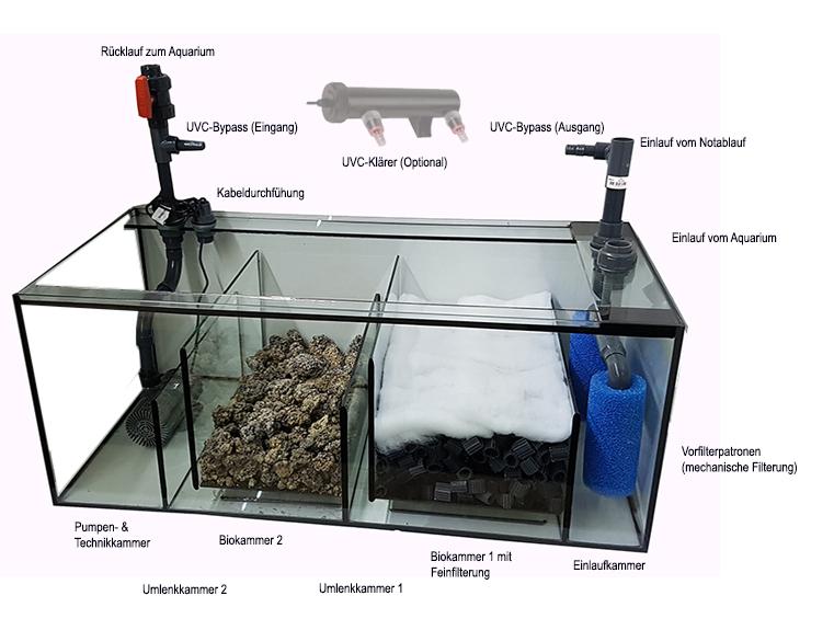 Fabulous Filtertechniken im Süßwasseraquarium | Aquarienkontor.de (by TF65