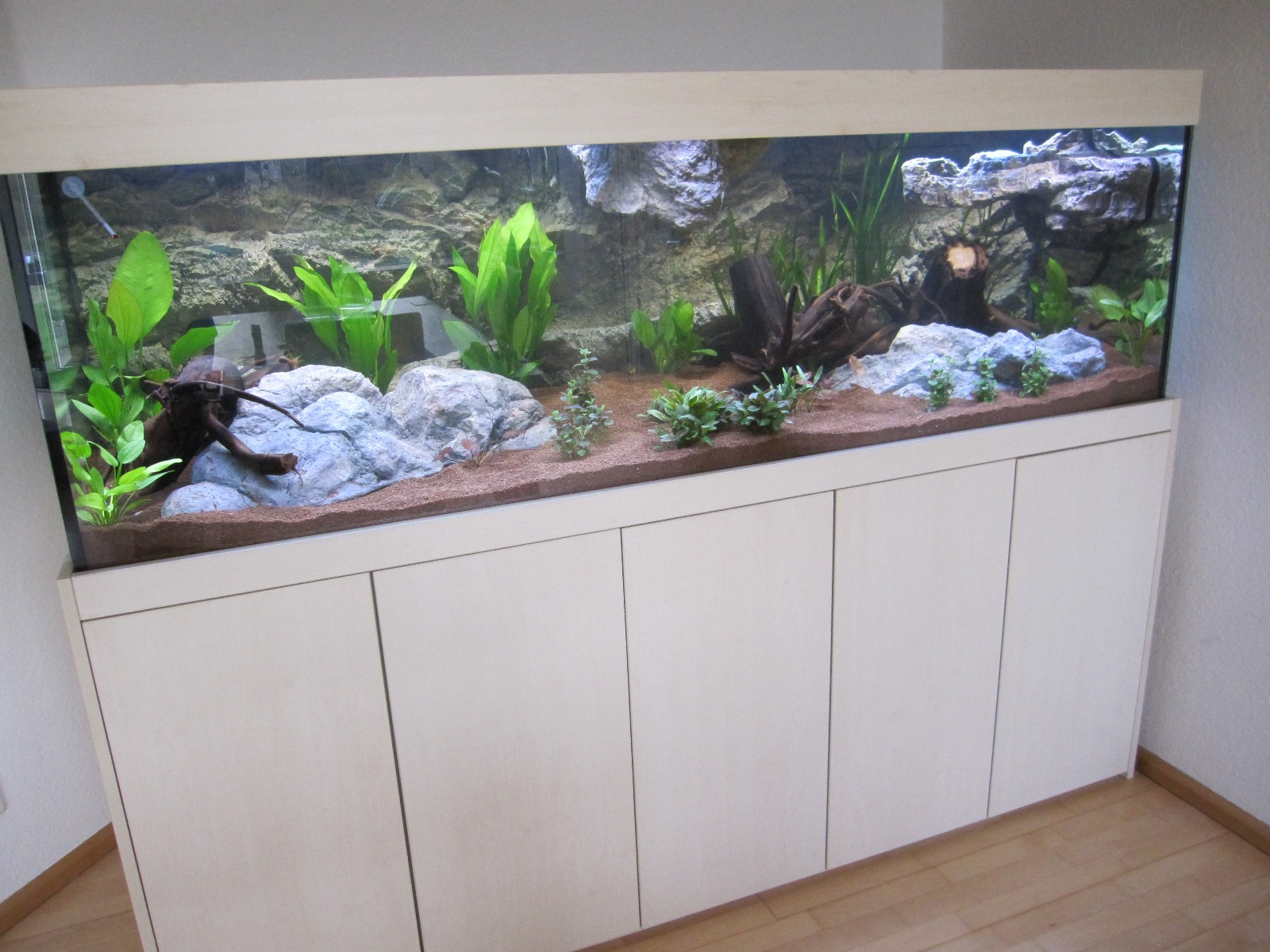 Filtertechniken Im Susswasseraquarium Aquarienkontor De By