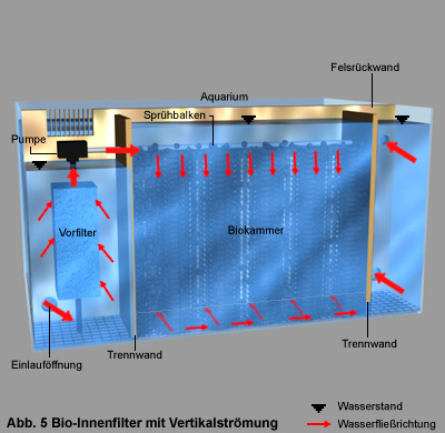 Top Filtertechniken im Süßwasseraquarium | Aquarienkontor.de (by YU17