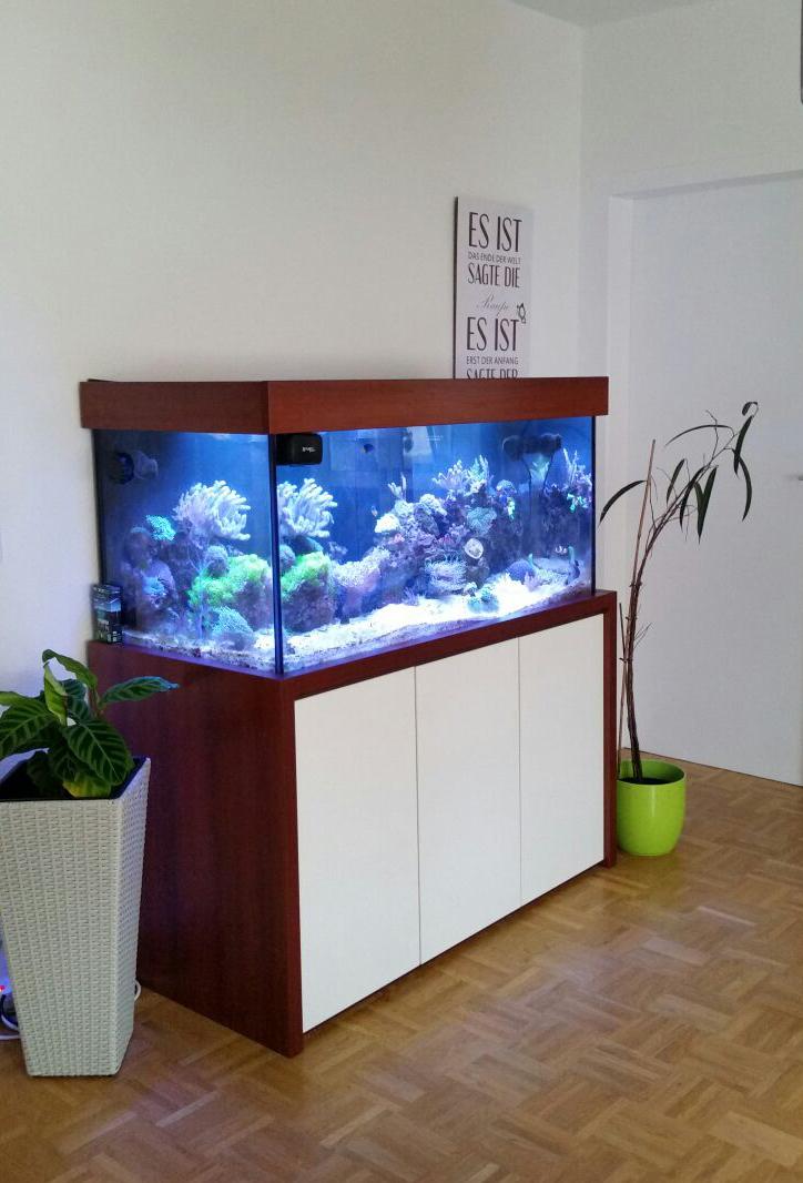 Das Meerwasseraquarium 5 die Beleuchtung   Aquarienkontor.de (by ...